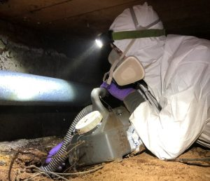 5 Reasons To Keep Your Crawl Space Clean