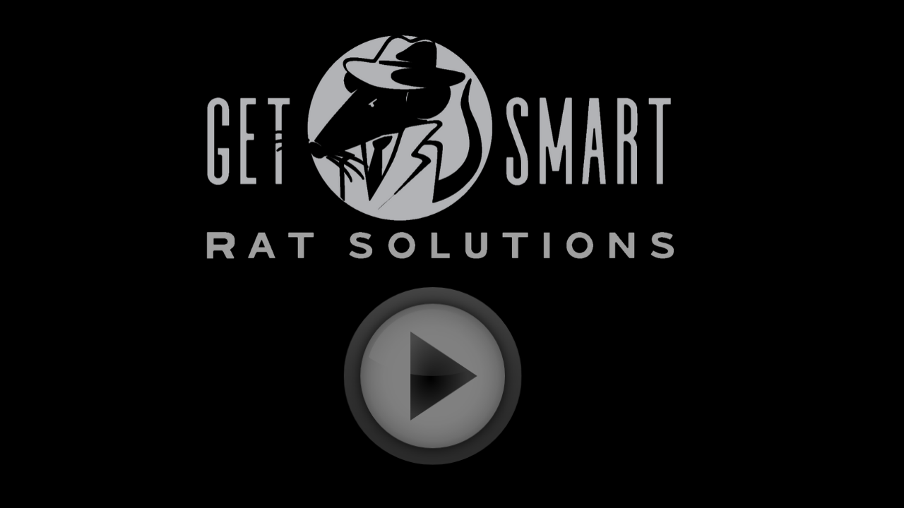 The Youngest Member of Get Smart Rat Solutions