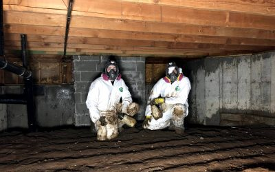 Will Homeowners Insurance Pay For Crawl Space Damage