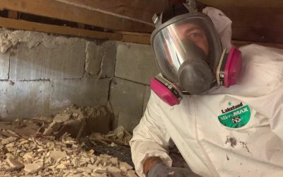 The Do's And Don'ts Of Cleaning Your Crawlspace